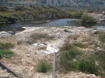 המים הללו שליד כביש המנהרות בחיפה מכילים זיהום. חלקו מתכות וחלקו מרכיבי דלק שונים. המטריד יותר שחלקו הוא גם מוצרים המיוצרים באופן מלאכותי, ידי אדם, לצרכים של מפעלי תעשייה שונים.