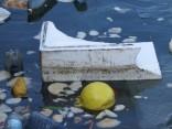 """התמונות צולמו במהלך שנת 2015 התאריך מופיע בקטן מציד שמאל למטה. לצערנו נמל יפו, השייך לעירית תל-אביב יפו, אינו מצליח לשמור באופן מלא על ניקיון הנמל. אשפה שהיא בעיקרה פלסטיק של מוצרים כמו חטיפים, אריזות מזון ושקיות """"גופיה"""" רגילות. הפלסטיק לא נעלם הוא נשאר במערכת האקולוגית של הים התיכון ולאט לאט מגיע לרקמות הדגים אותם רבים אוכלים בבית או במסעדה."""